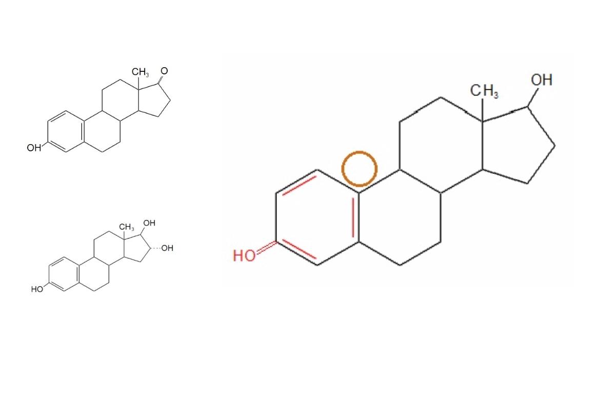 Oestrogene